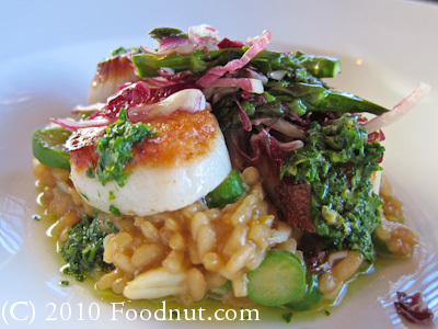Baker and Banker Restaurant San Francisco Dayboat scallops risotto