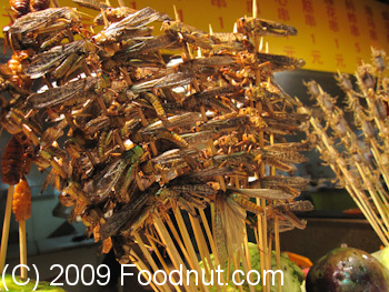 Dong Hua Men Night Market Beijing China Bugs