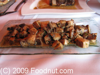Boboquivaris San Francisco Portobello Mushroom