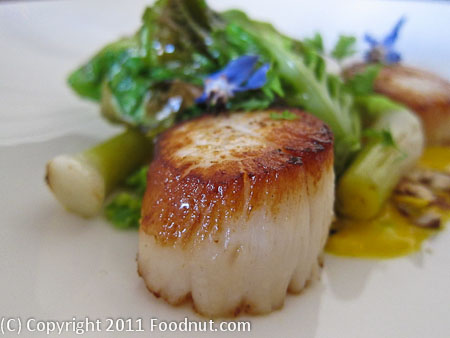 Commonwealth San Francisco scallop