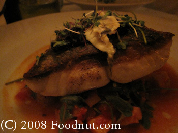 Frascati San Francisco Blue Nose Bass Livornese