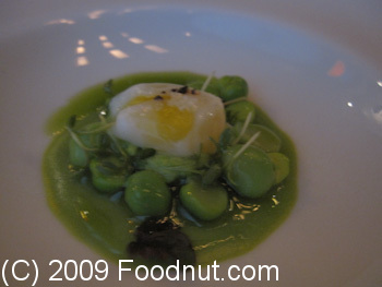 Guy Savoy Paris France Tout Petit pois Jellow of raw peas