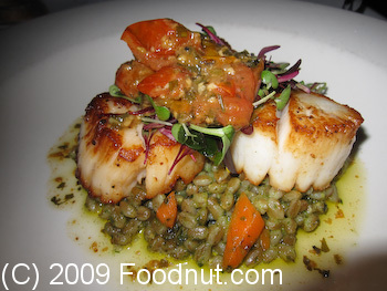 John Bentlys Seared Day Boat Scallops