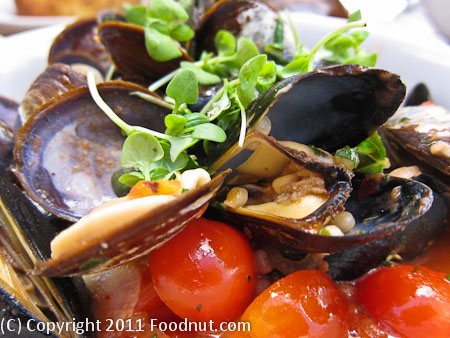 Madera Restaurant Menlo Park mussels clams