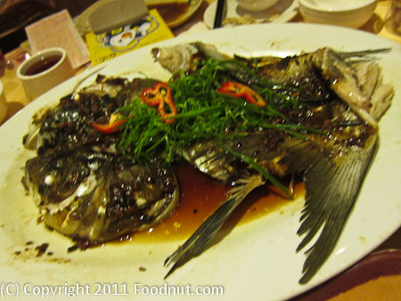 Shi Qi Lao Zhongsan China Fish