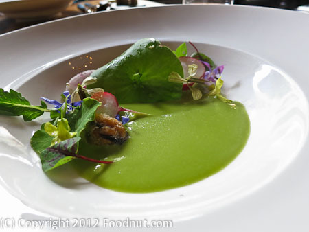 Sons and Daughters San Francisco Green Garlic Soup