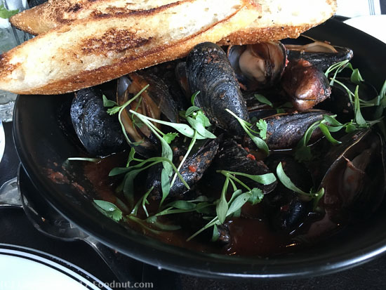 The Saratoga San Francisco Mussels Cioppino
